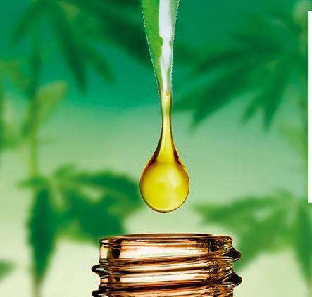 How it Works Cannabis Oil?